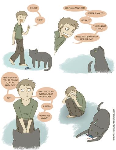 Cat Convo