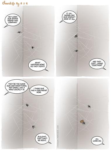 Amorous Arachnids