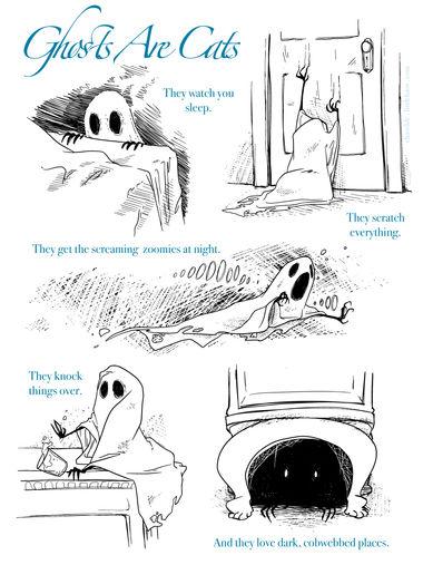 Paranormal Pet