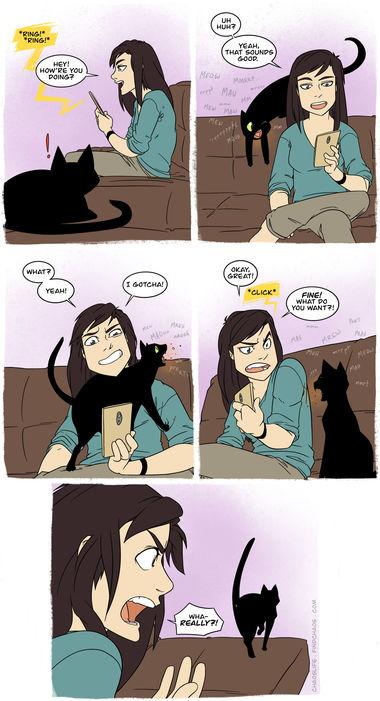 Catty Caller