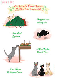 12 Days Of Catmas Part 1