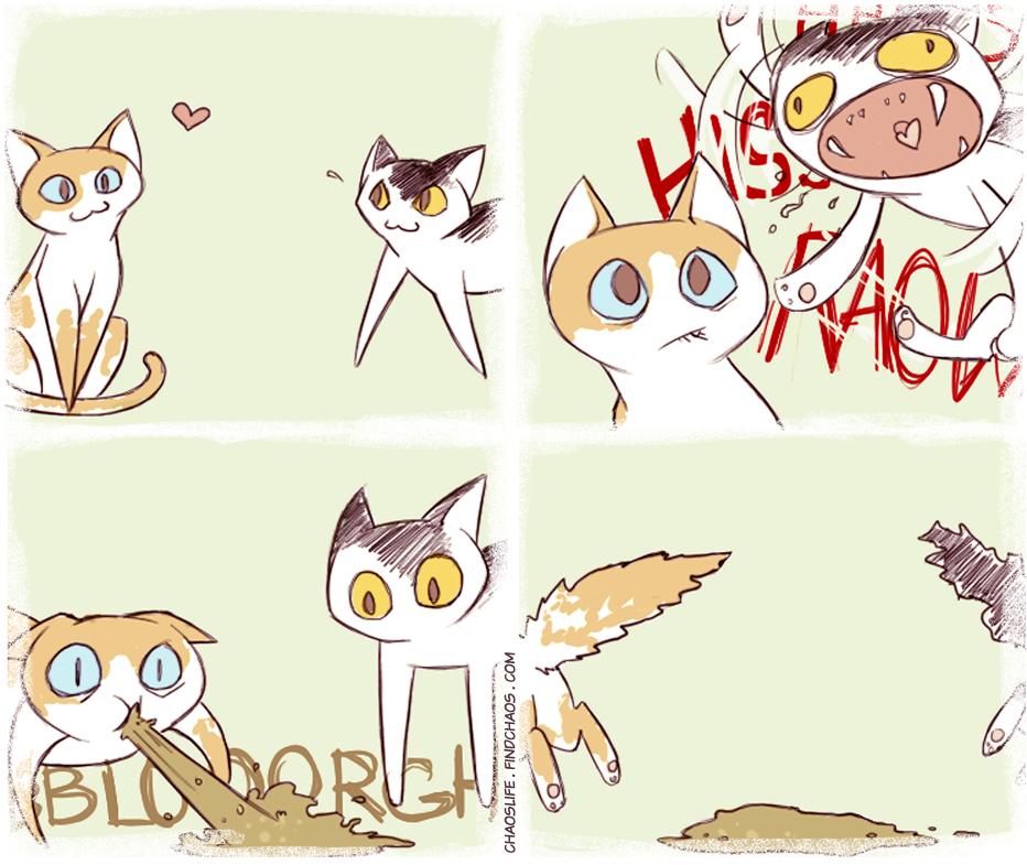 Meet N' Greet Cat Edition